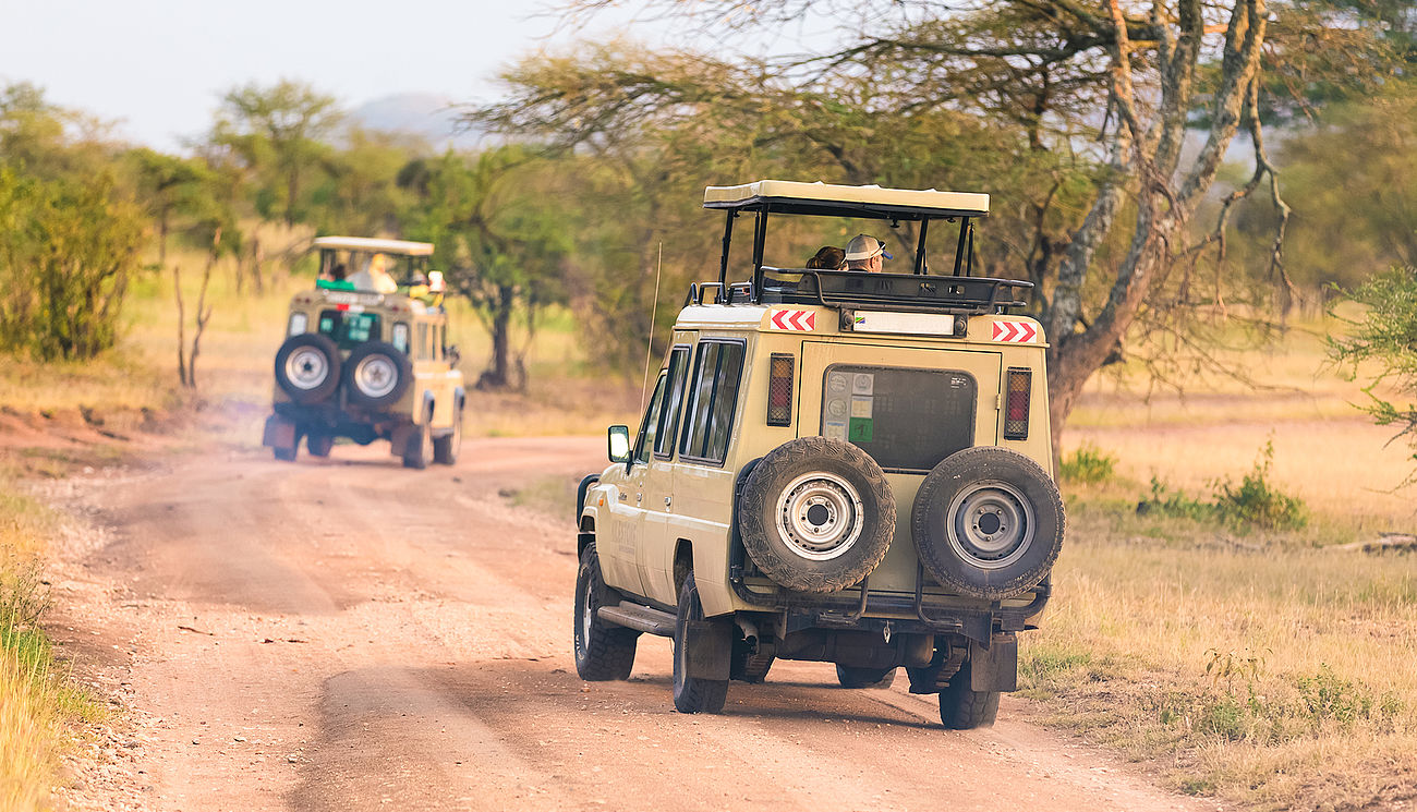 Jeepsafari im Kruger Nationalpark