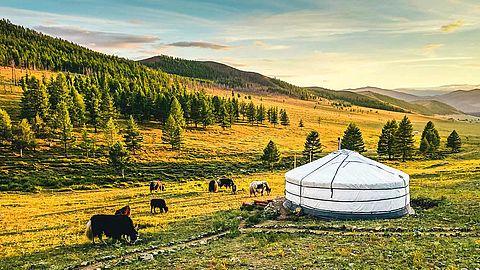 Mongolei Kultur
