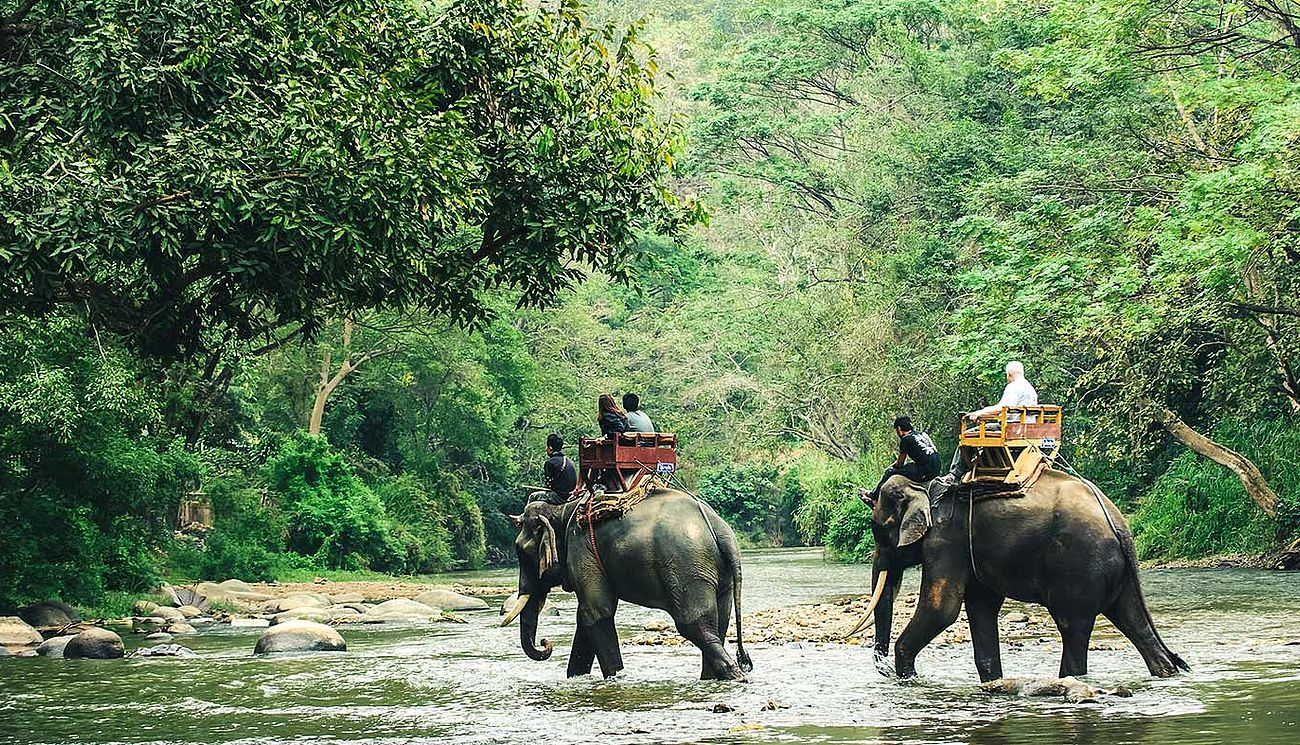 Safari im Chitwan Nationalpark