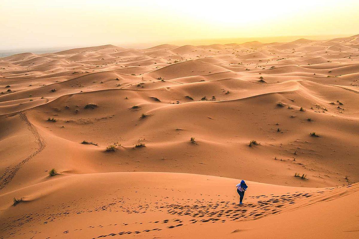 Ficken In Der Wüste