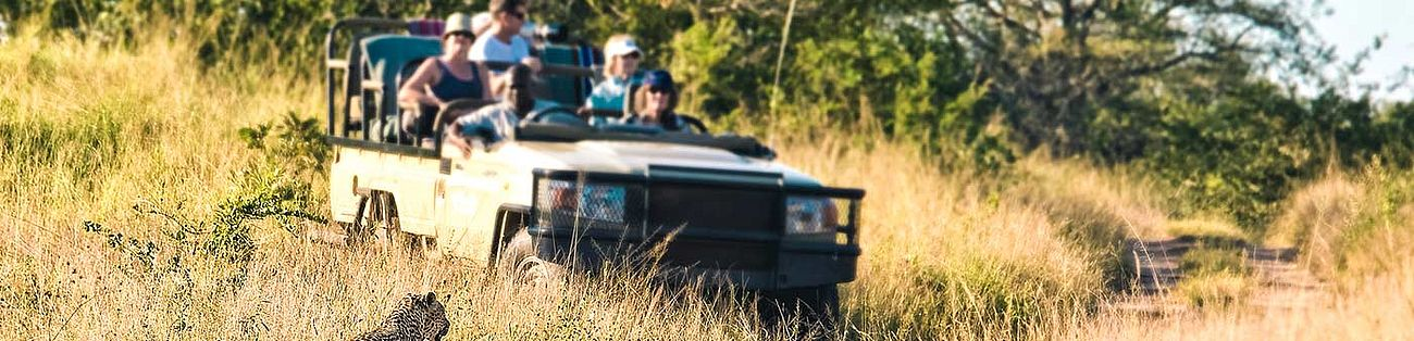 Safari im Jeep im Kruger Nationalpark